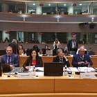 Танева: Европейското съфинансиране на програмите срещу АЧС не трябва да се намалява