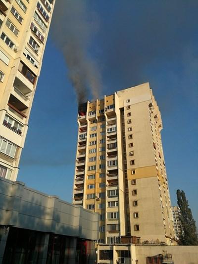 СНИМКА: Мартин Атанасов/ Забелязано в София
