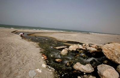 Някои от най-красивите плажове в света са замърсени, което провокира младите двойки да предприемат екомеден месец. СНИМКА: РОЙТЕРС