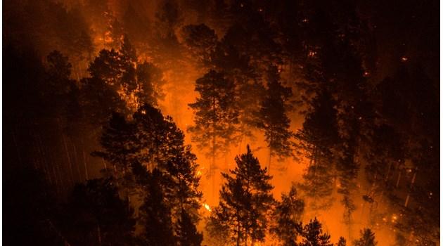 Сибир в пламъци