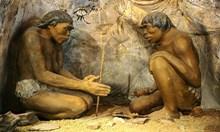 Последните 3 хил. години затъпяваме