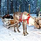 Миро си припомня за дома на Дядо Коледа