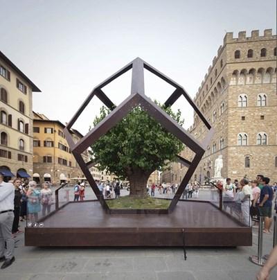 Дърво от черница, затворено в додекаедър, пред Палацо Векио във Флоренция  СНИМКИ: ФЕЙСБУК