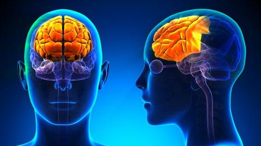 Тайните на тийнейджърския мозък