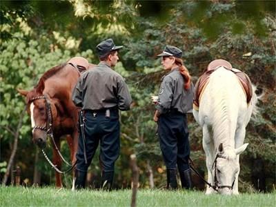 Повече конни полицаи ще обикалят централните паркове в София и ще пазят зелените площи от вандали. СНИМКА: НИКОЛАЙ ЛИТОВ