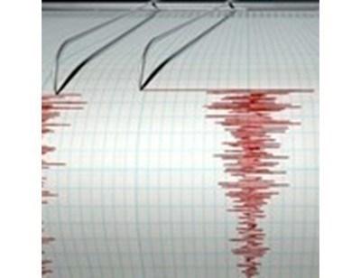 Земетресение с магнитуд 6,7 бе регистрирано днес край бреговете на кралство Тонга. Снимка: Архив
