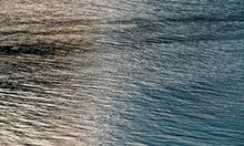 50-годишна е извадената мъртва жена от река Марица в Пловдив