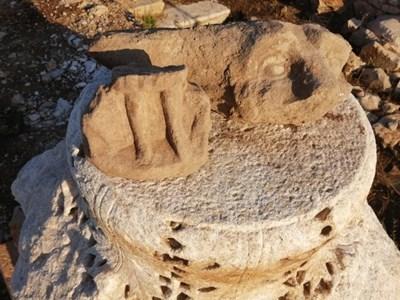 Откритите находки на Хераклия Синкита. СНИМКИ: Archaeologia Bulgarica