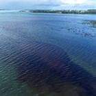Разлив от петролни продукти край Мавриций. Снимки: Ройтерс