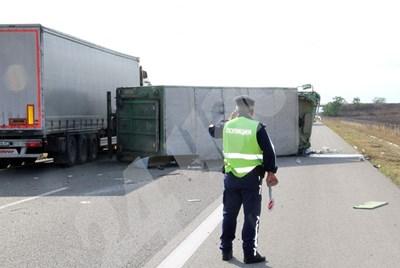 Прасетата останаха под брезента на обърнатия камион, но всички се струпаха вдясно. Някои загинаха от удара, други се задушиха. Снимки: Ваньо Стоилов