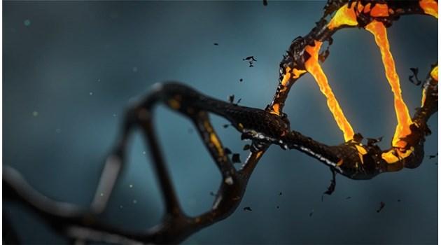 Стресът променя гените