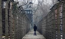 Аушвиц: Музеят на ада