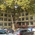Изписаха трима от заразените с коронавирус от болницата в Пазарджик
