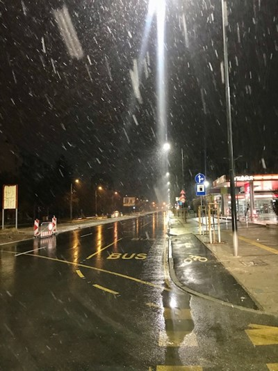 Снегът вече вали в София (Снимки)