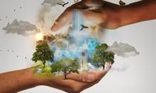Какво е наистина добро за Земята? 7 факта за климатичните промени