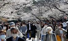 Д-р Иво Куцаров: В Япония без ваксини болните намаляват