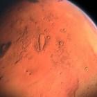 Учен обяви, че е открил живи насекоми на Марс