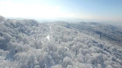 Китай обяви създаването на няколко национални природни парка