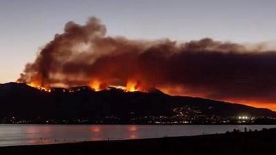 Най-големият пожар в историята на Калифорния се разраства и вече бушува над езерото Елсинор. Стихията наложи евакуация на над 20 000 души. Сателитна снимка разкри, че димът покрива почти целия щат с площ, 4 пъти по-голяма от  България. СНИМКА: РОЙТЕРС