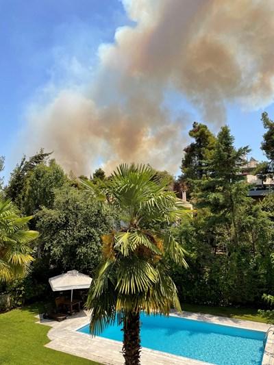 Дим от горски пожар се издига над Дросия край Атина.  СНИМКИ: РОЙТЕРС