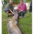 Двамата доктори с голямата риба Снимки: Костадин Костадинов