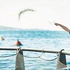Kefalonia Fisheries, гръцкият производител на лаврак и ципура, е пример за развиващо се биологично производство на аквакултури в ЕС. Източник: thefishsite.com