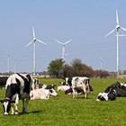 Две трети от германските фермери не вярват, че ще получат по-висока производствена цена за млякото, прилагайки промените за опазване на климата. Едва една трета виждат това като възможност за по-високи приходи.