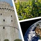 Устойчив агробизнес на Балканите под натиска на климатични промени