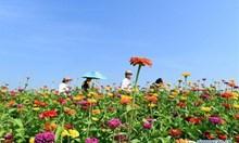 Китайският туристически пазар има огромен потенциал за международните туроператори