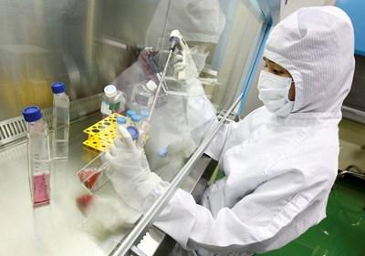 Трансплантация на стволови клетки у нас се извършва по утвърдените стандарти на медицината. СНИМКА: РОЙТЕРС