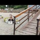 Мария Бакалова на плажа в Бургас (Видео)