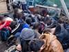 Румънски граничари са задържали 17 мигранти, влезли в страната от България
