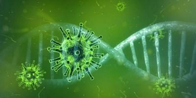 Установиха 6-те най-лесни мишени на коронавируса