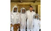 Пчелите са новата страст на звездите