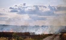 Разкриха момчетата, запалили масивите с жито в Монтанско