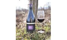 New Bloom Winery представи две нови червени вина в серията PIXELS