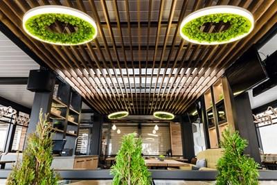 Ресторантът е потънал в зеленина