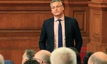 БСП щели да сезират Европейския съд по правата на човека, за да защитят защитника на най-бруталната гавра с човешките права