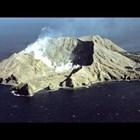 Туристи са пострадали при изригването на вулкана в Нова Зеландия (Видео + обновена)