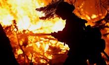 Продължава битката с пожара Калдор в Калифорния