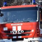 Загасиха голям пожар над Брестовица