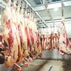 Проучване: Червените и преработените меса повишават риска от сърдечни заболявания