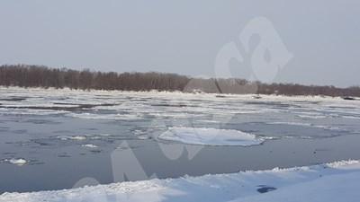 Дунав бързо замръзва, достигна 50% ледоход (обновена+снимки)