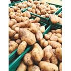 Цената на фуражните картофи в ЕС се срина до 2,75 евро/100 кг