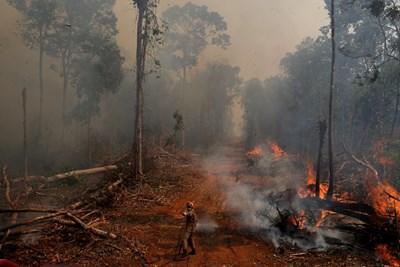 Кадър от пожара в Амазония Снимка: Ройтерс
