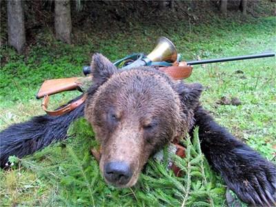 """Трофейните мечки са твърде скъпи за отстрел. СНИМКА: """"24 ЧАСА"""""""