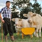 В Европейския съюз работят 700 000 млечни ферми!