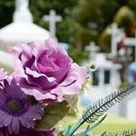 Гробищен парк Снимка: Пиксабей