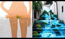 Причудливи и забавни графити