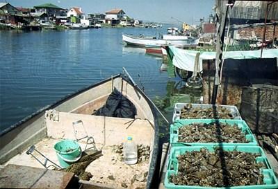 Историята на живописното и препатило рибарско селище ще бъда пресъздадена с похватите на филмовата документалистика. Снимка: Елена ФОТЕВА